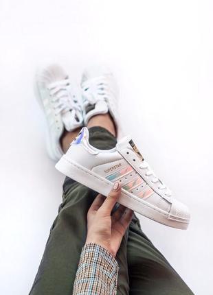 Топовые женские кроссовки adidas superstar белые