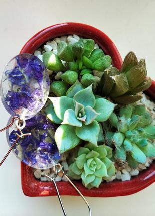 Овальные серьги с цветами, мхом (две пары)
