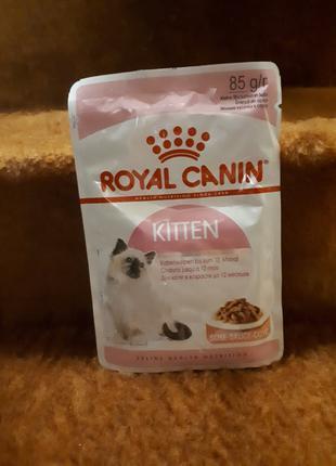 Пауч Royal Canin Kitten для котят до 12 месяцев