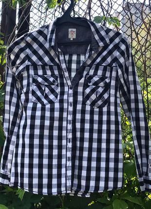 жіноча сорочка від бренду House