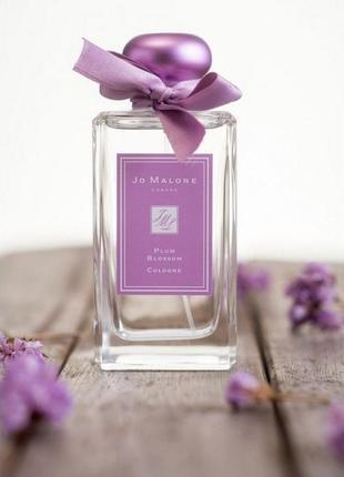 Plum Blossom Jo malone_Original_cologne intense 5 мл