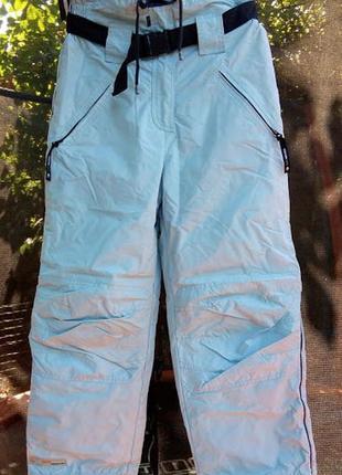 Лыжные брюки зимние штаны gato negro