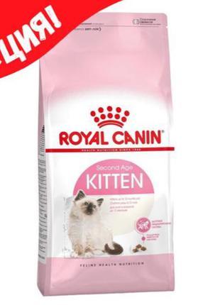 Royal Canin Kitten котята от 4 до 12 месяцев