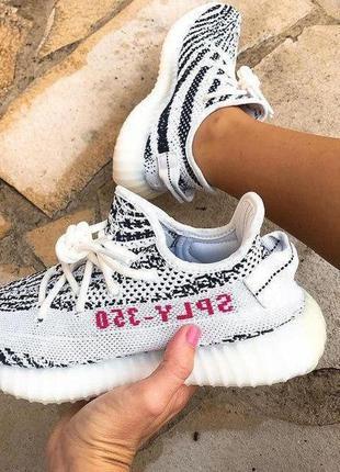 Adidas yeezy boost 350 zebra белые с серым ⭕ женские кроссовки...