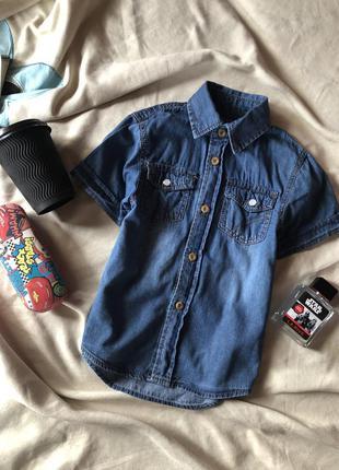 Джинсовая рубашка , джинсовая тенниска на мальчика от rebel на...