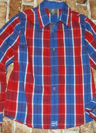 Рубашка неношено 10лет коттон timberland