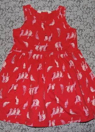 Платье хб лето 2-4года нм сток