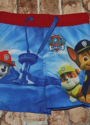 Новые пляжные шорты 2-3 года nickelodeon щенячий патруль