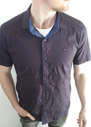 Рубашка мужская хлопковая бордовая