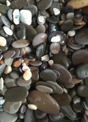 Морская галька, грунт для аквариума (гравий, камни с Черного моря