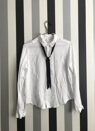 Красивейшая блуза рубашка с завязкой галстуком