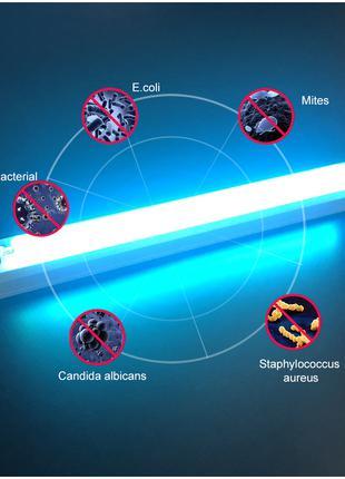 Бактерицидная кварцевая ультрафиолетовая лампа от вирусов, клещей