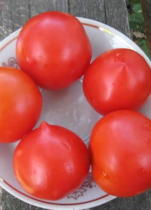 Семена томатов.     Все коллекции, 200 сортов.
