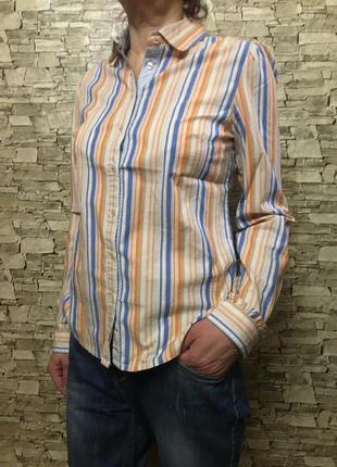 Женская рубашка в полоску от tommy hilfiger