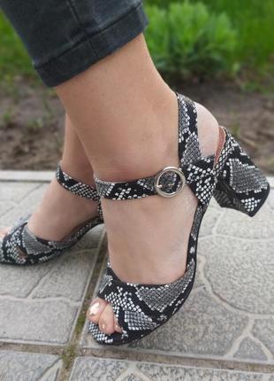 Хит продаж женские босоножки на каблуке рептилия, красивые бос...