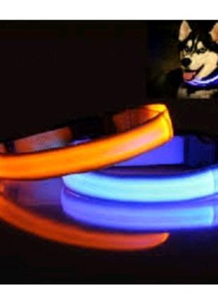 Светящийся ошейник. 25 см. Оранжевый
