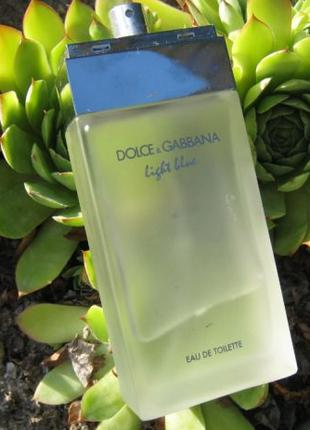 Dolce & Gabbana Light Blue