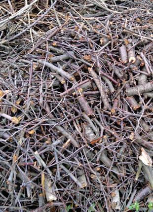 Щепа Вишня вишневая дробленые ветки для копчения
