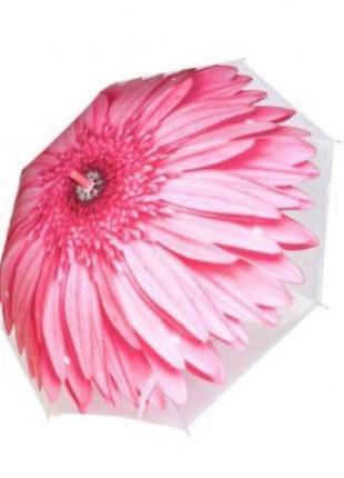 Зонт цветок