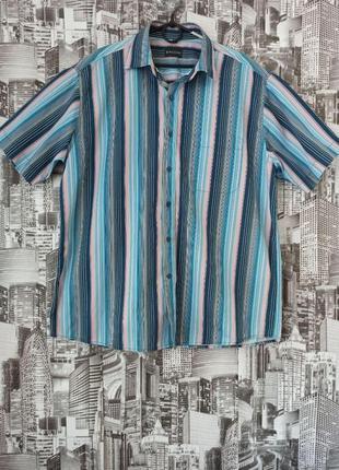 Мужская рубашка с коротким рукавом в полоску большой размер