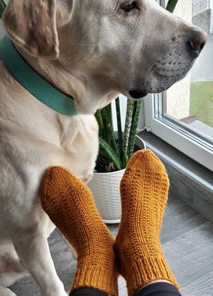 Носки вязаные.