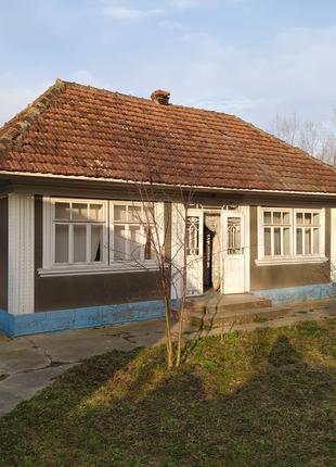 Господарство/Будинок с.Рукшин біля м.Хотин