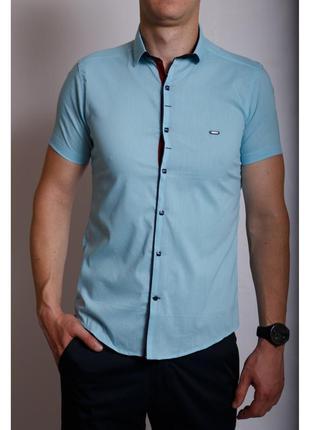 Рубашка мужская короткий рукав ps  точки голубая