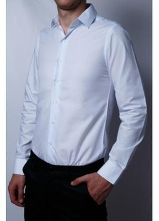 Рубашка мужская bazol  белая в стиле бренда
