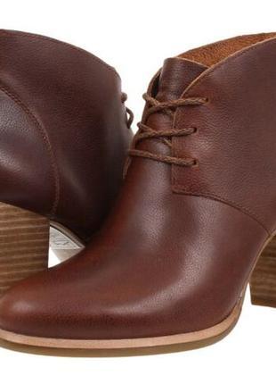 Ботинки ботильоны кожаные деми ugg mackie boot австралия сша о...