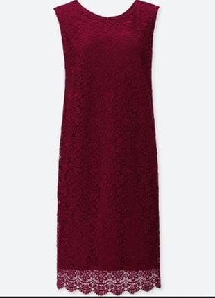 Платье коктейльное uniqlo , xs-s, винный, кружево