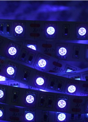 стерилизатор ультрафиолетовая светодиодная лента 5м - 600грн