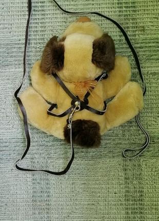Поводок (шлея) для собак, кошек, кролика