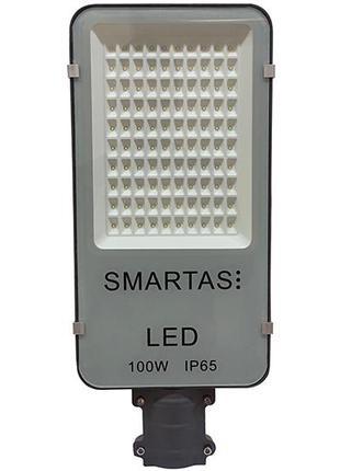Уличный светильник SMARTAS LED 100W (FOREST)