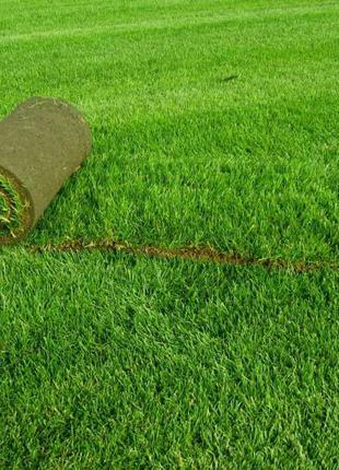 Искусственная трава - искусственный газон для декора.