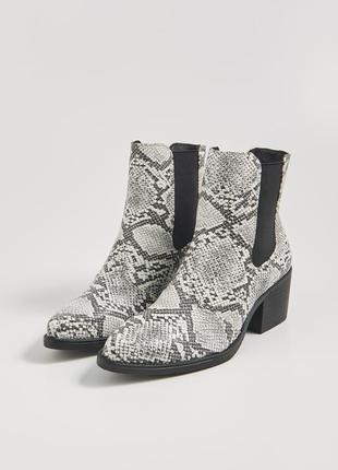 Крутые стильные полусапоги ботинки казаки челси анималистическ...