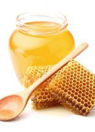 Мед, мед в сотах, маточное молочко, перга, пчелиный подмор
