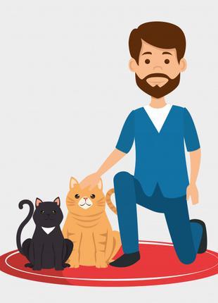 Ветеринарная помощь, стрижка, кастрация зоотакси