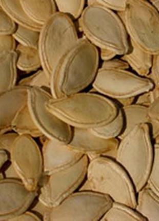 Семечка тыквы волошская  коричневая ,стофунтовка,укр. многоплодна