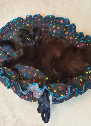 Лапки (черный) - круглая лежанка трансформер для котов и собак