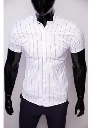 Рубашка мужская короткий рукав стойка полоска guspolo  белая