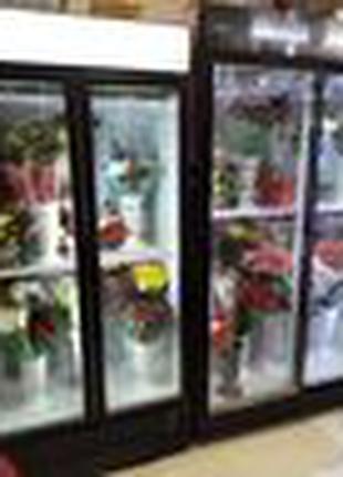 Холодильные шкафи