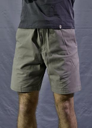 Eclectik / Chino Shorts dust grey / Sale!