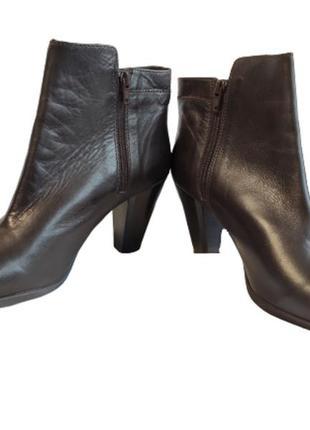 Сапоги женские демисезонные полусапожки кожаные коричневые jones