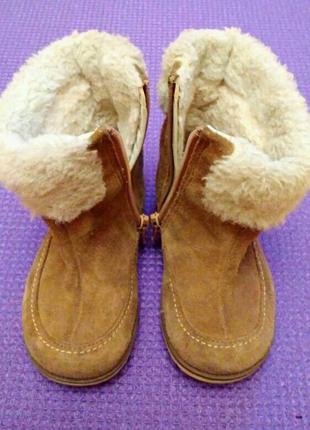 Детские зимние сапожки Clarks