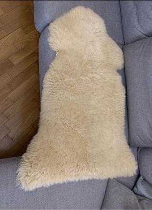 2 овечьих натуральных шкурки