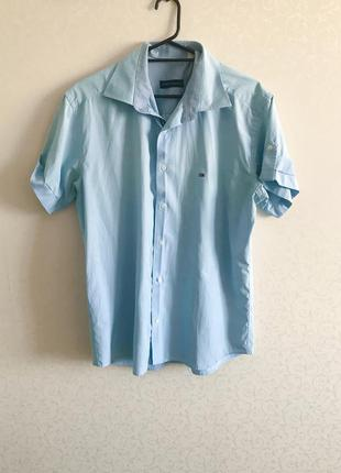 Рубашка мужская, голубая рубашка, летняя мужская рубашка tommy...