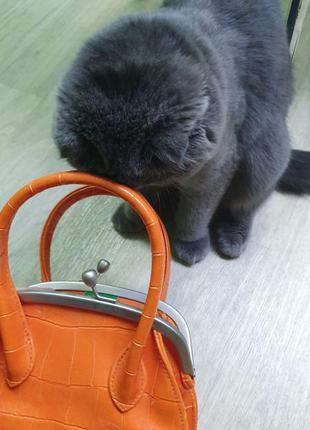 Оранжевая сумка benetton среднего размера из эко кожи