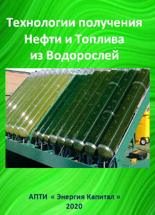 Технологии получения Нефти и Топлива из Водорослей
