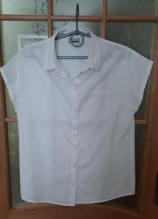 Блуза рубашка с коротким рукавом