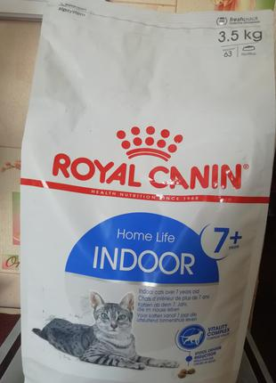 Royal canin in door +7